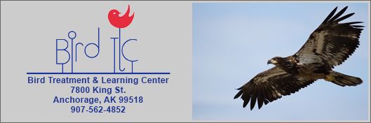 Bird Treatment & Learning Center